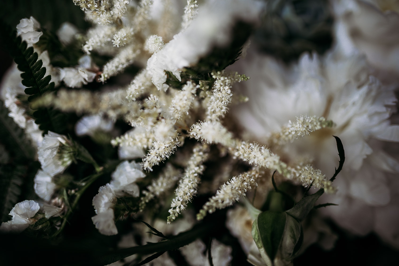 Bouquet con fiori secchi e piante grasse al castello di Collegno