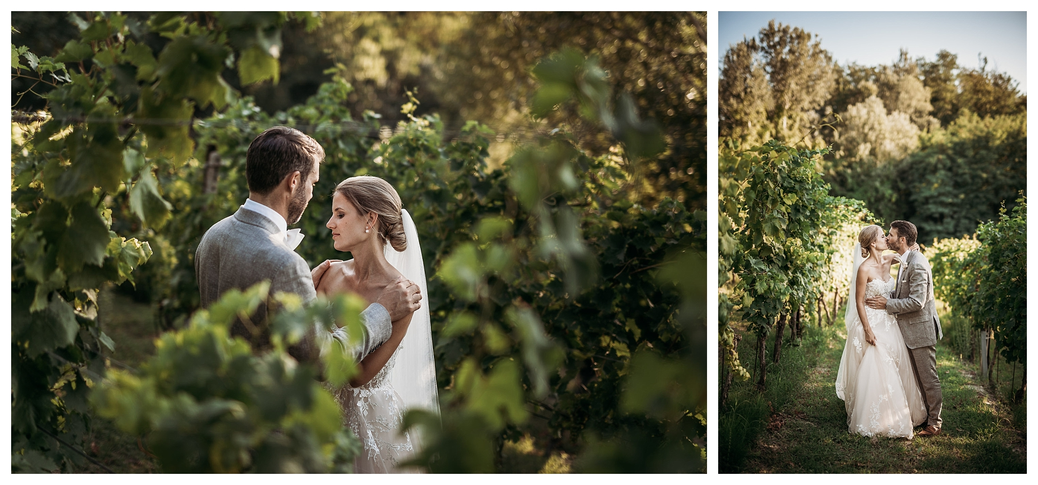 Wedding couple in the vineyards for their wedding in Italy