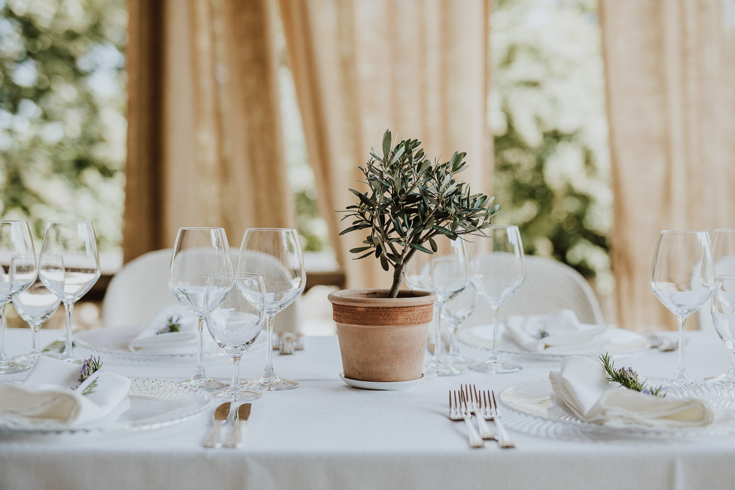 Olives plant centerpieces for a wedding at Castello di Tassara, in Italy